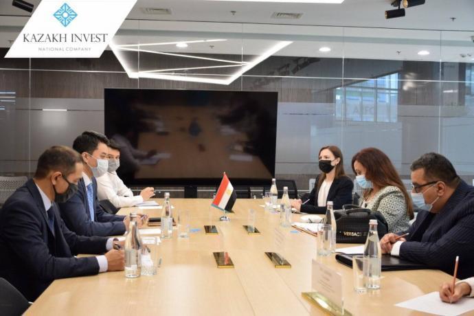哈萨克斯坦与埃及有意加强投资合作