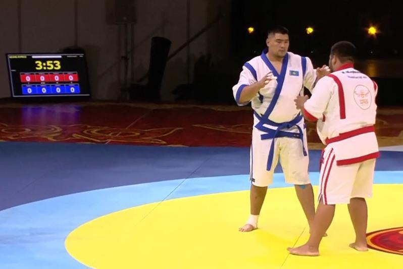 Стали известны победители турнира «Казахстан барысы»