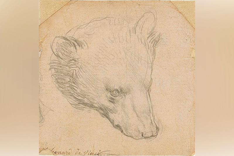 Леонардо да Винчи чизган айиқ боши сурати рекорд даражада 8,9 миллион фунт стерлингга сотилди