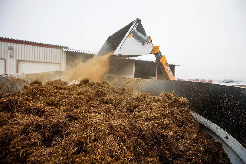 Ввести временный запрет на вывоз кормов поручил Президент Казахстана