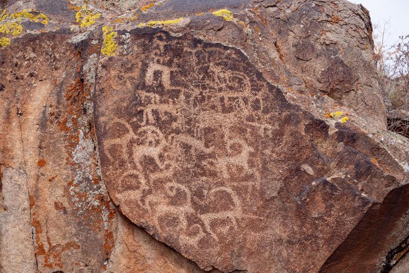 Более трех тысяч петроглифов найдены в горах Архарлы в Алматинской области