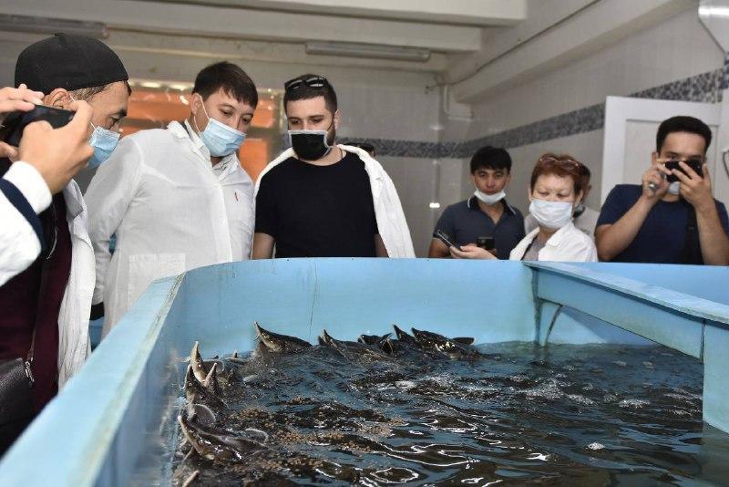 Свыше 40 рыбных хозяйств планируют создать в  Актюбинской области
