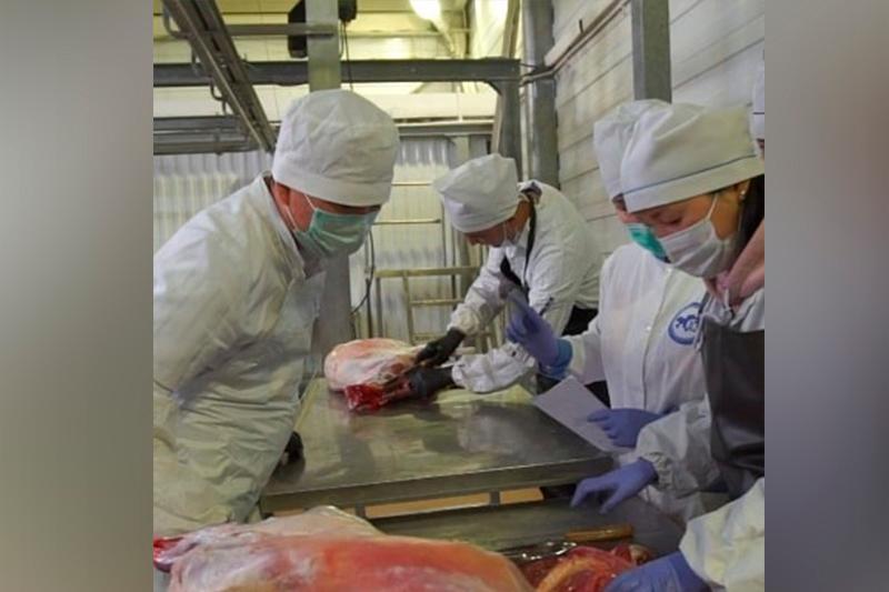 Карагандинская мечеть раздала более 12 тысяч килограммов мяса в первый день Курбан-айта