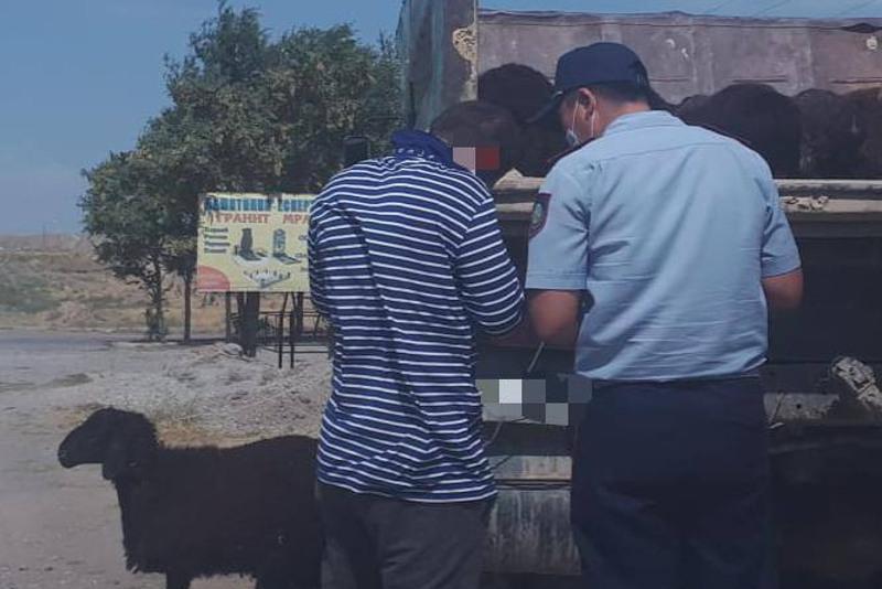 Рейды по соблюдению ограничений в Курбан айт проходят в Шымкенте