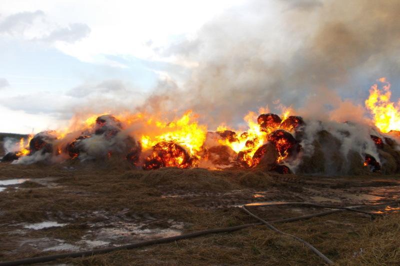 Три тысячи рулонов сена сгорело в Кызылординской области