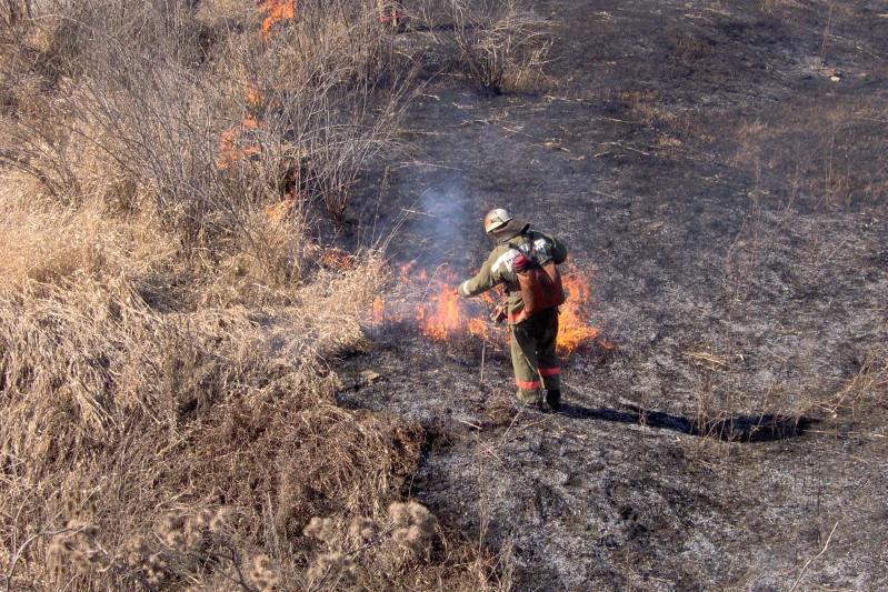 В столице увеличилось число возгораний сухой травы