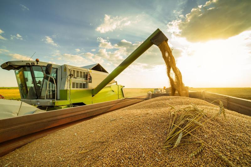 Над обеспечением бесперебойных перевозок зерна работают в КТЖ