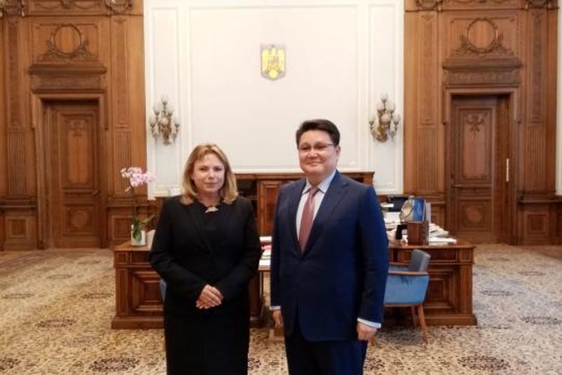 哈萨克斯坦大使会见罗马尼亚参议长