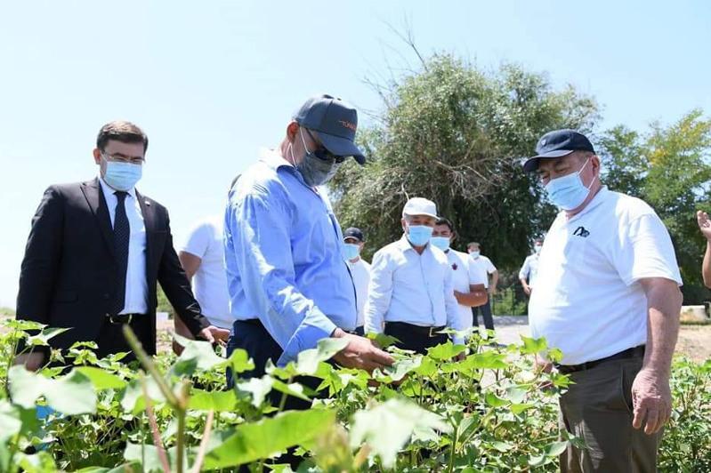 Как решается проблема с поливной водой в районах Туркестанской области