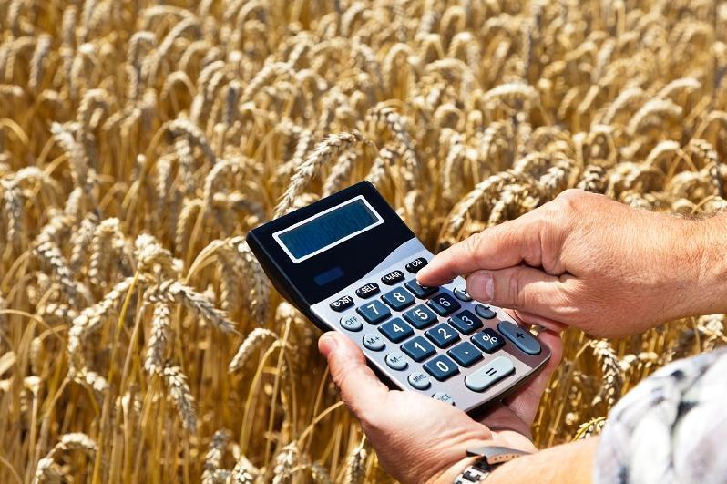 哈萨克斯坦拟投入4.9万亿坚戈用于农业发展