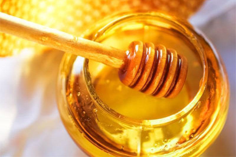 哈萨克斯坦10家蜂蜜生产企业获准向沙特阿拉伯出口产品