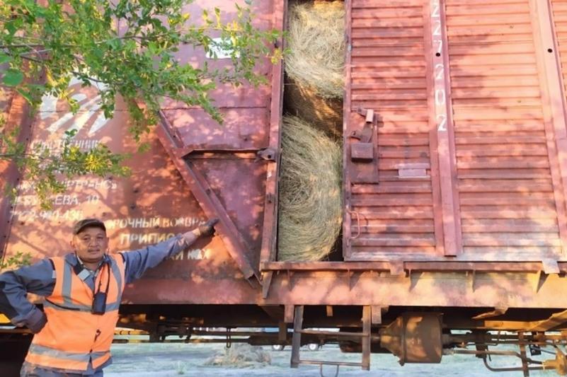 Қарағандылықтар Маңғыстау облысына 6 мың тең шөп жіберді