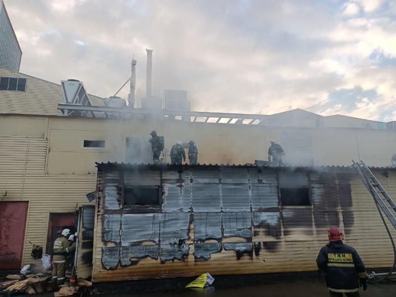 200 человек эвакуировали из гипермаркета в Петропавловске