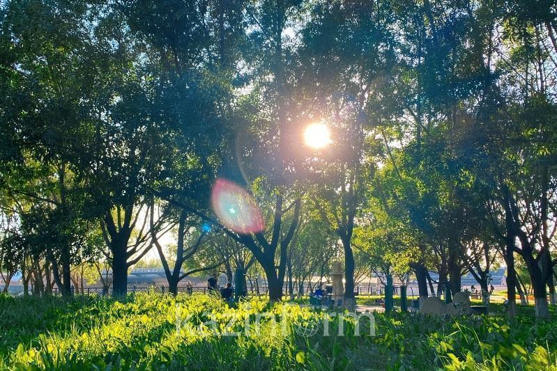 29 шілдеде ел аумағының басым бөлігінде күн ашық болады