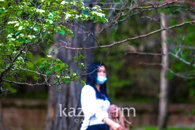 Матрица: Туркистон вилоятидан ташқари бошқа ҳудудлар «қизил» зонада