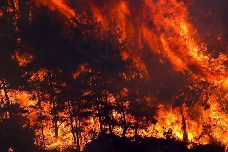 No Kazakhstanis among victims, injured in wildfires in Turkey – Embassy