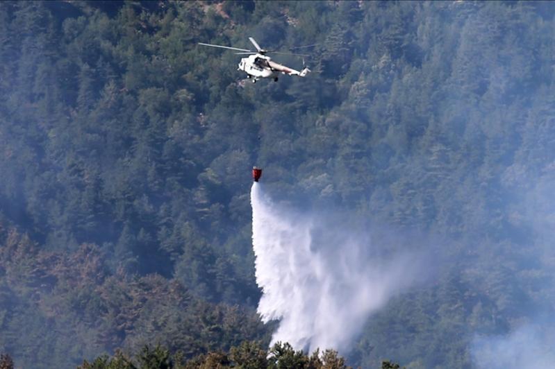 В шести провинциях Турции продолжается тушение лесных пожаров