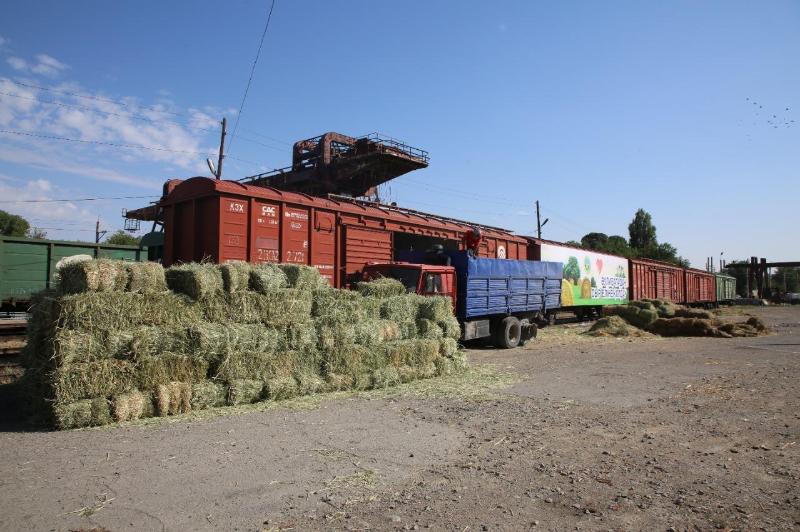 16 вагонов с сеном отправили жамбылцы в Кызылординскую область