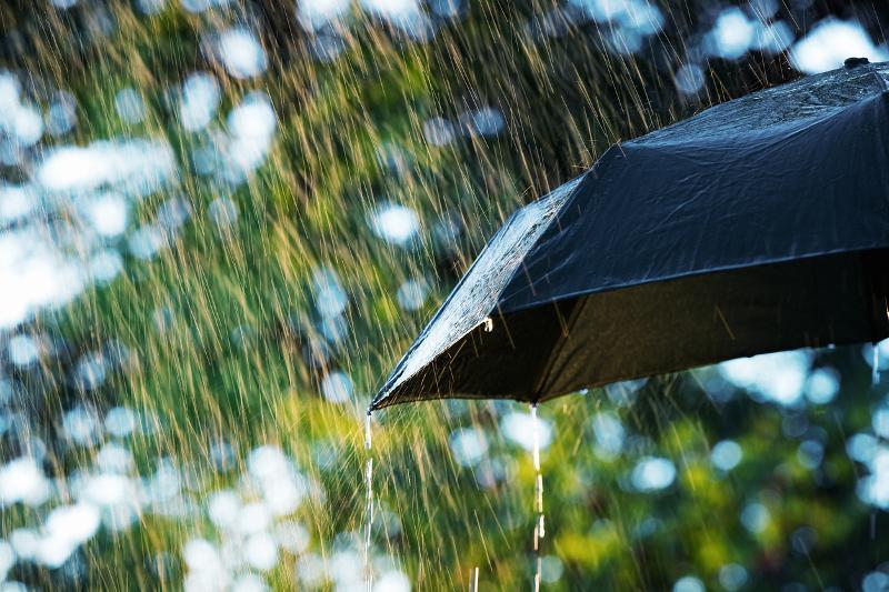 Усиление ветра, дождь и жара ожидаются в Казахстане 31 июля