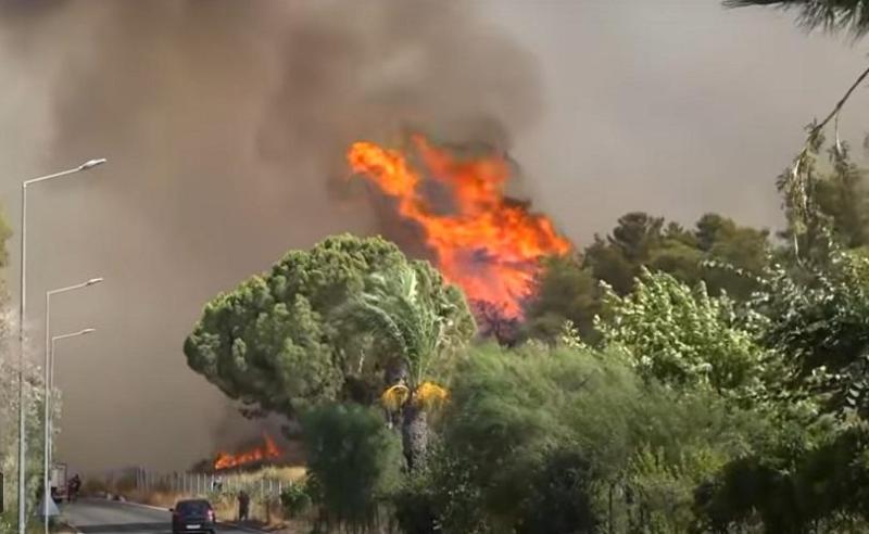 Лесные пожары бушуют на юге Европы