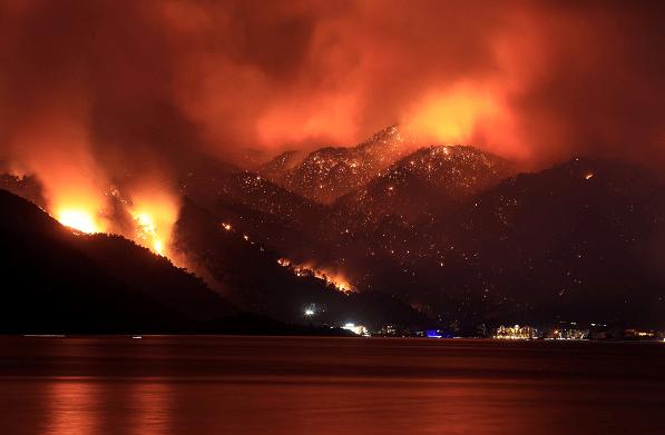土耳其森林大火已导致8人死亡
