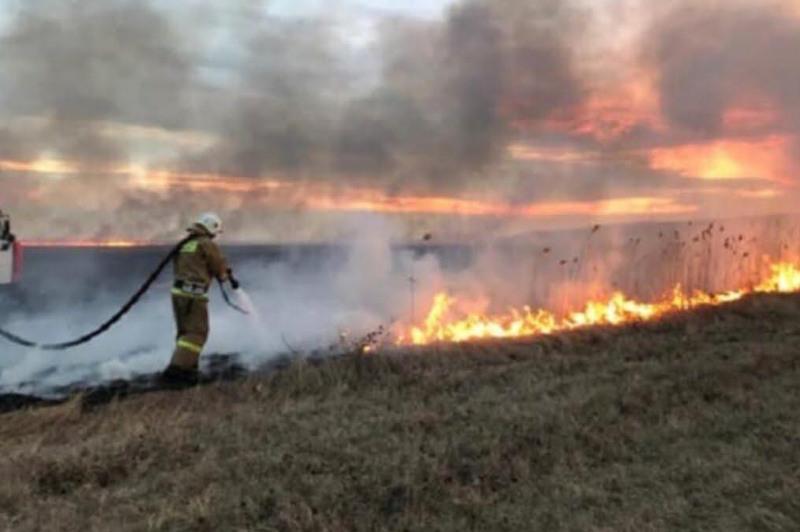 Степной пожар почти сутки тушили в Костанайской области