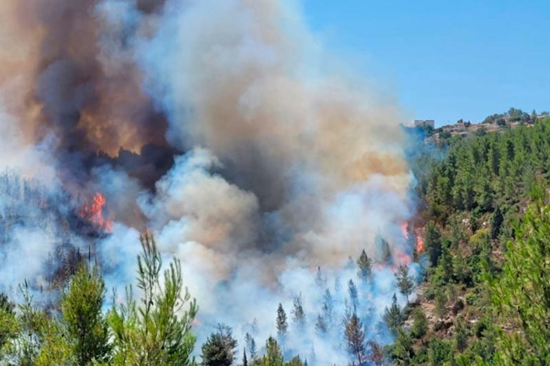 Мощный лесной пожар подбирается к Иерусалиму