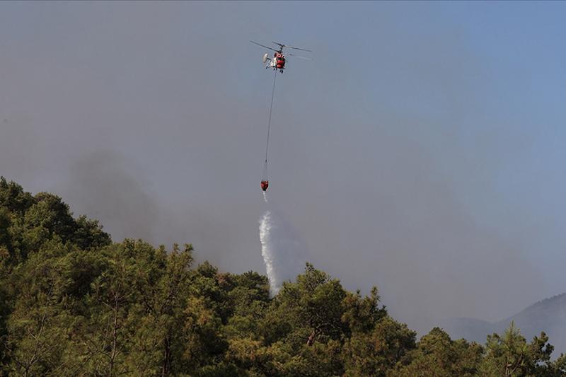 За последние десять лет в Турции локализовано свыше 20 тысяч лесных пожаров
