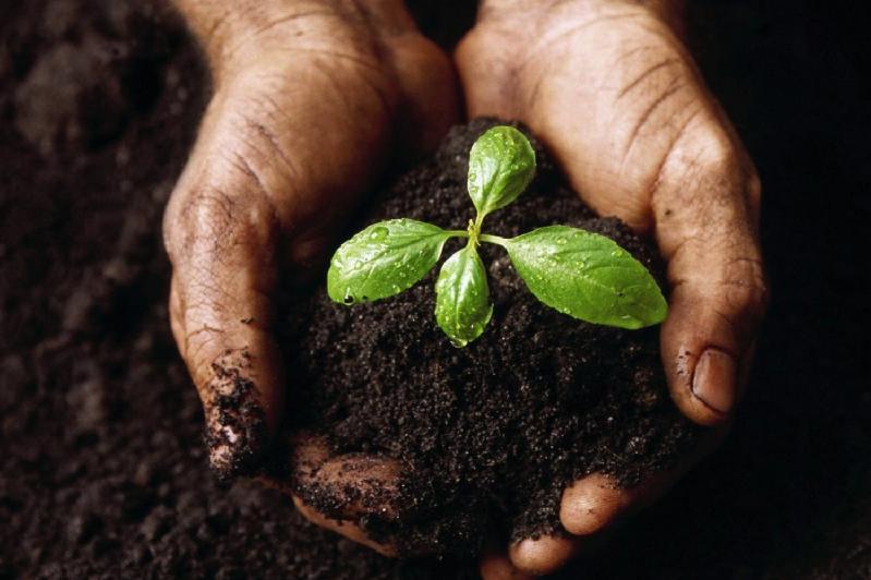 哈萨克斯坦有机农业发展前景广阔