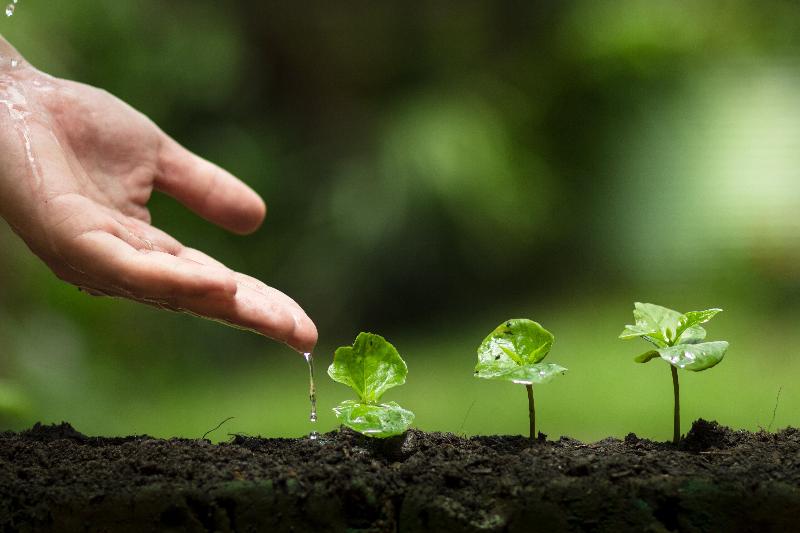 """欧亚开发银行与AIFC携手实施""""绿色项目"""""""