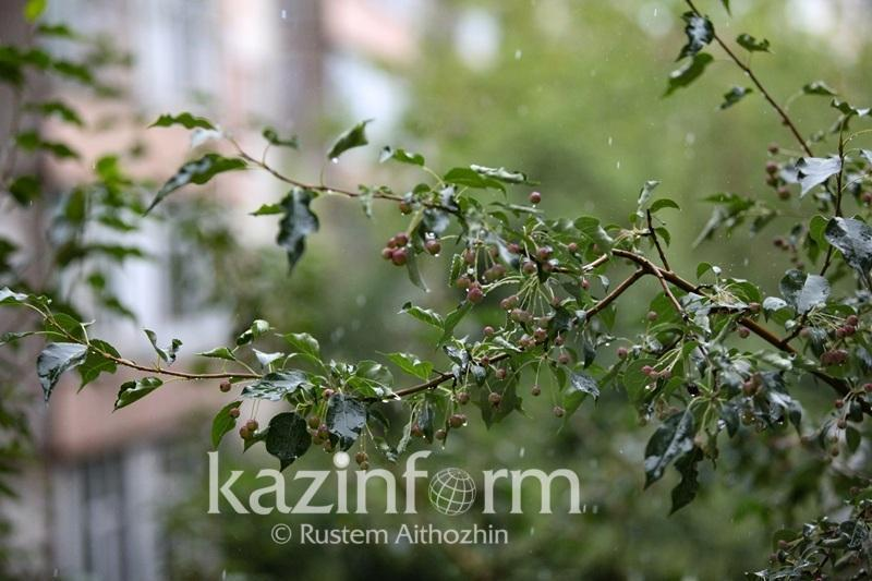N Kazakhstan rgn to expect frosty nights
