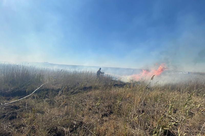 Атырауда «Ақжайық» резерватының 1 гектар аумағы өртенді