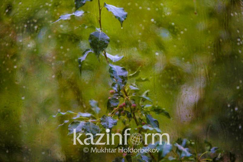 Грозы, ветер, заморозки - шторм ожидается в семи областях Казахстана