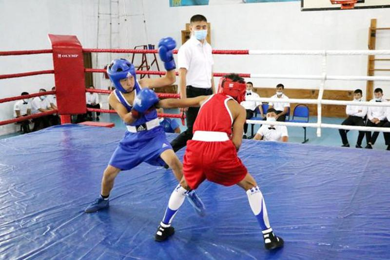 Стартовало первенство Туркестанской области по боксу среди юношей