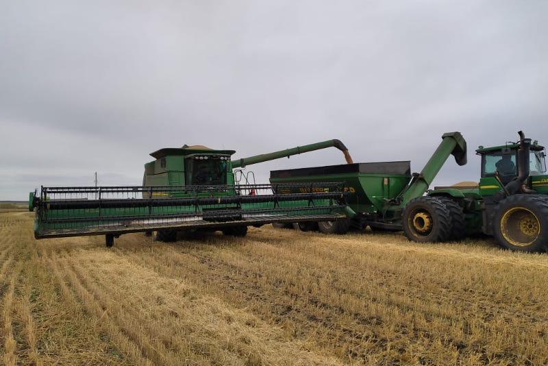 К 25 сентября планируют завершить уборку урожая в Зерендинском районе