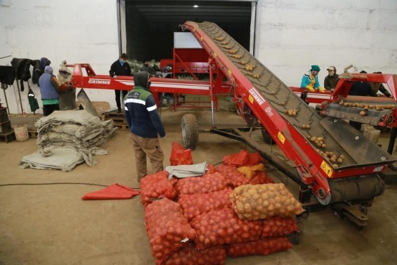 Завершить уборку урожая в Карагандинской области планируют до 10 октября