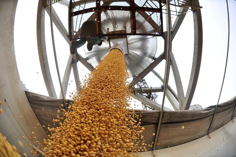 Увеличить экспорт сельхозпродукции в четыре раза намерены в  ВКО