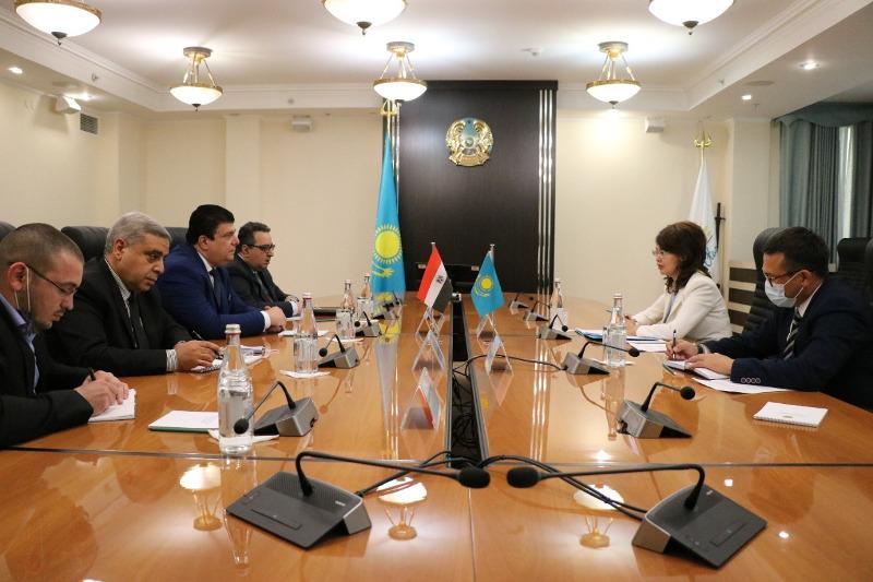 Казахстан и Египет намерены развивать сотрудничество по курируемым сферам МИОР РК