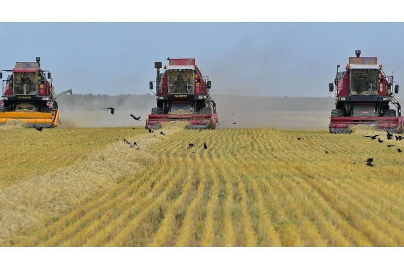Программу залужения малопродуктивных земель разработают в Павлодарской области