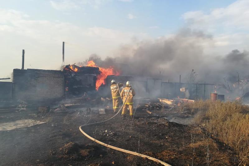 58 дачных участков сгорели в Акмолинской области