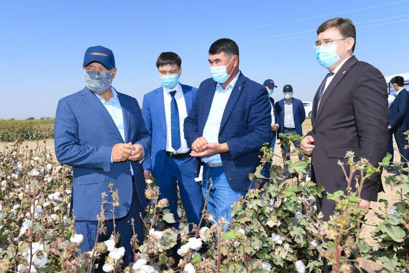 Тонну хлопка принимают по 250 тысяч тенге в Туркестанской области