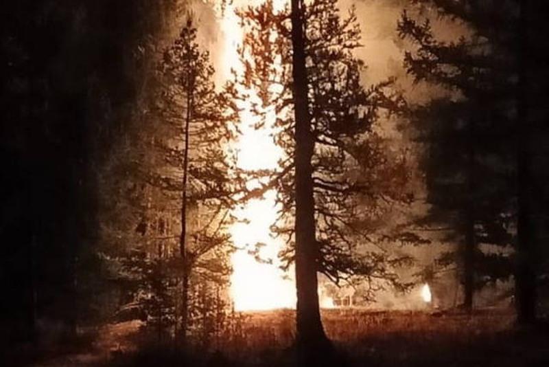 Загоревшийся из-за грозы лес третьи сутки тушат в ВКО