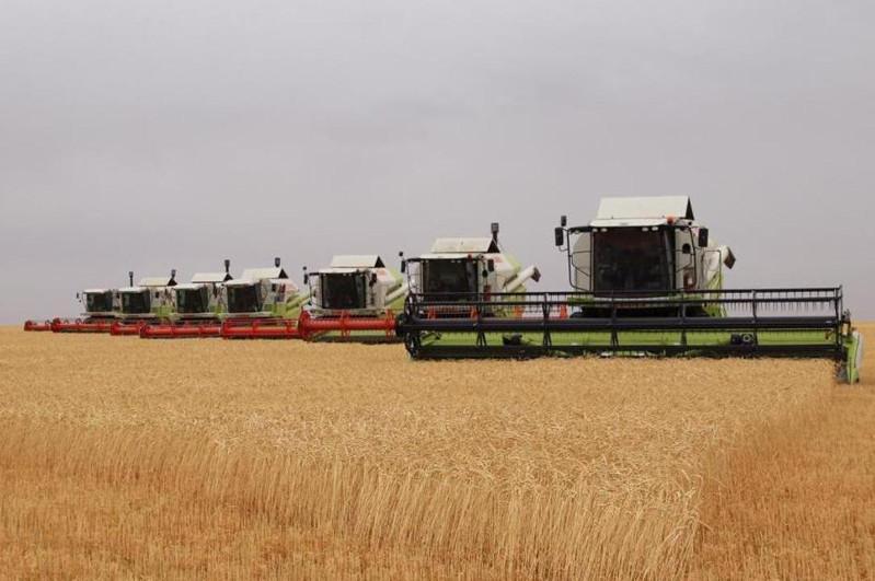 Четыре района Карагандинской области завершили уборку зерновых