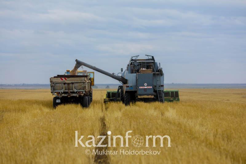 Более одного миллиона тонн урожая планируют собрать в Алматинской области
