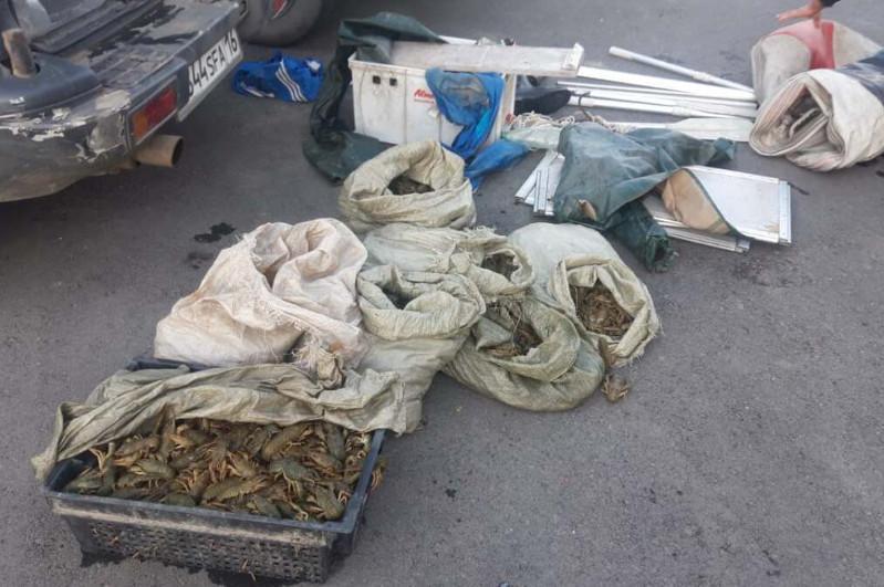 66 кг раков изъяли у браконьера в ВКО