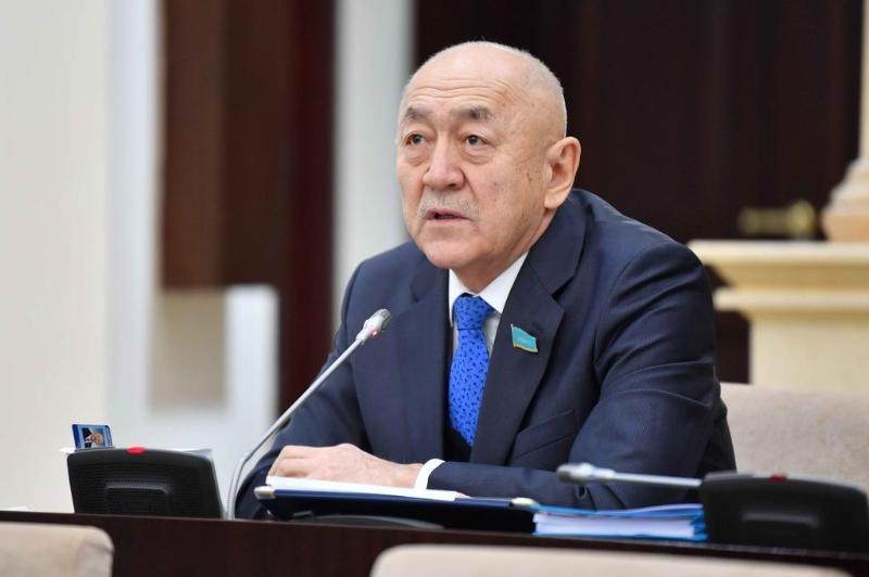 Подготовкой казахстанских спортсменов к зимней Олимпиаде поинтересовались сенаторы