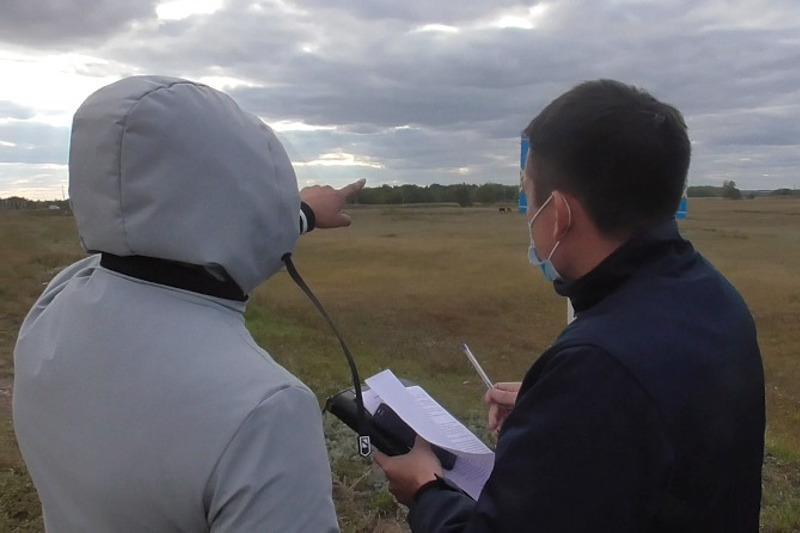 Жителей Кокшетау подозревают в серийной краже скота в СКО