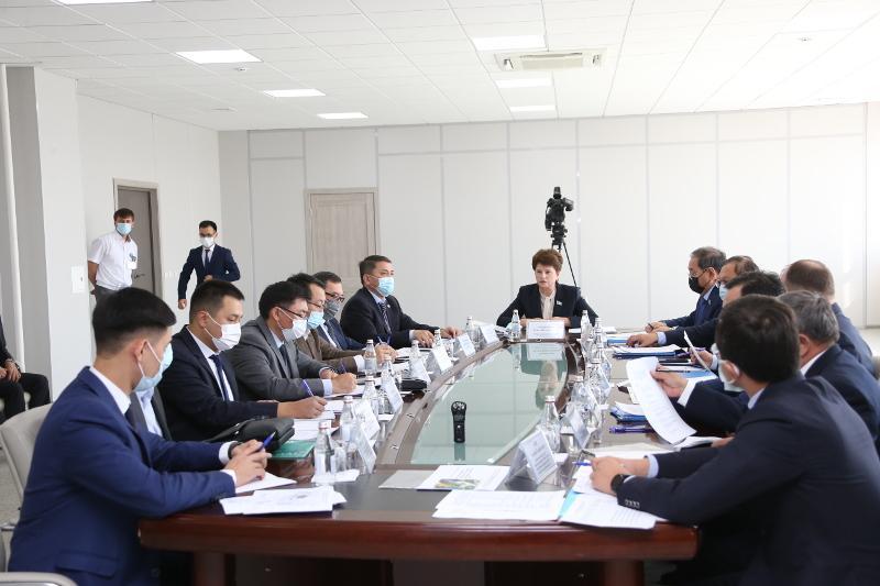 Сенаторы обсудили проблемы таможенного администрирования в Алматинской области