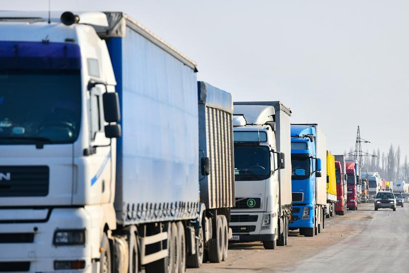 Минсельхоз пресек ввоз подкарантинной продукции в Казахстан