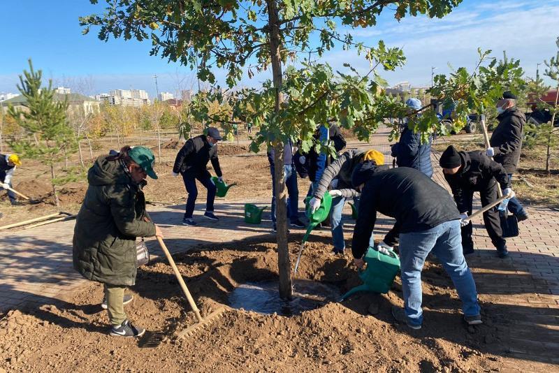 Свыше двух тысяч деревьев посадили во время субботника в Нур-Султане